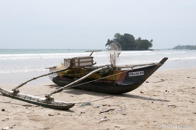 Destinos para enero: Sri Lanka