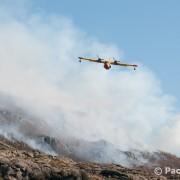 Incendios provocados en Sanabria