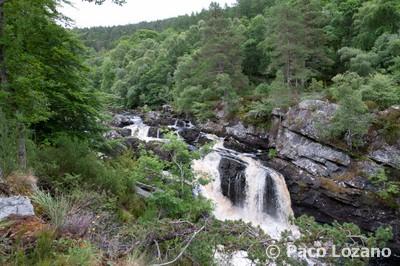 Rogie Falls, visita recomendada en las Highlands