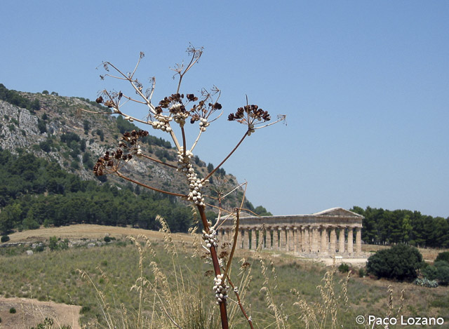 Sicilia, mejor destino para noviembre