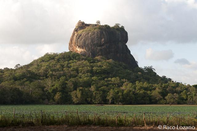 sigiriya, destino imprescindible en Sri Lanka