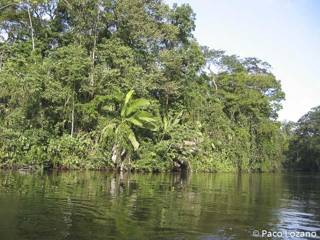 Dónde viajar en febrero: Costa Rica